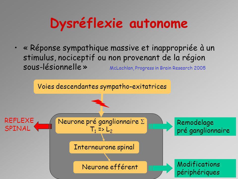 Dysréflexie autonome « Réponse sympathique massive et inappropriée à un stimulus, nociceptif ou non provenant de la région sous-lésionnelle » McLachla