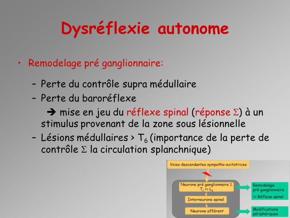 Dysréflexie autonome Remodelage pré ganglionnaire: –Perte du contrôle supra médullaire –Perte du baroréflexe mise en jeu du réflexe spinal (réponse )