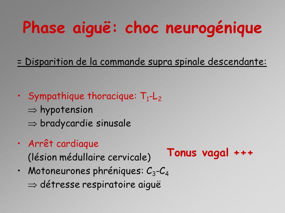 En réanimation Persistance de lhypotension (vasoplégie) Hypertonie vagale: 1 à 3 semaines –ACR lors daspirations trachéales –Bradycardie sinusale SiADH: oligurie (1 ère semaine) Défaillance respiratoire: –Bronchoconstriction –Diaphragme –Perte des muscles intercostaux (-40% de Capacité vitale) –Lésions traumatiques thoraciques associées 64-77 % lésion cervicale Niveau < Thoracique moyen : cardiaque préservé