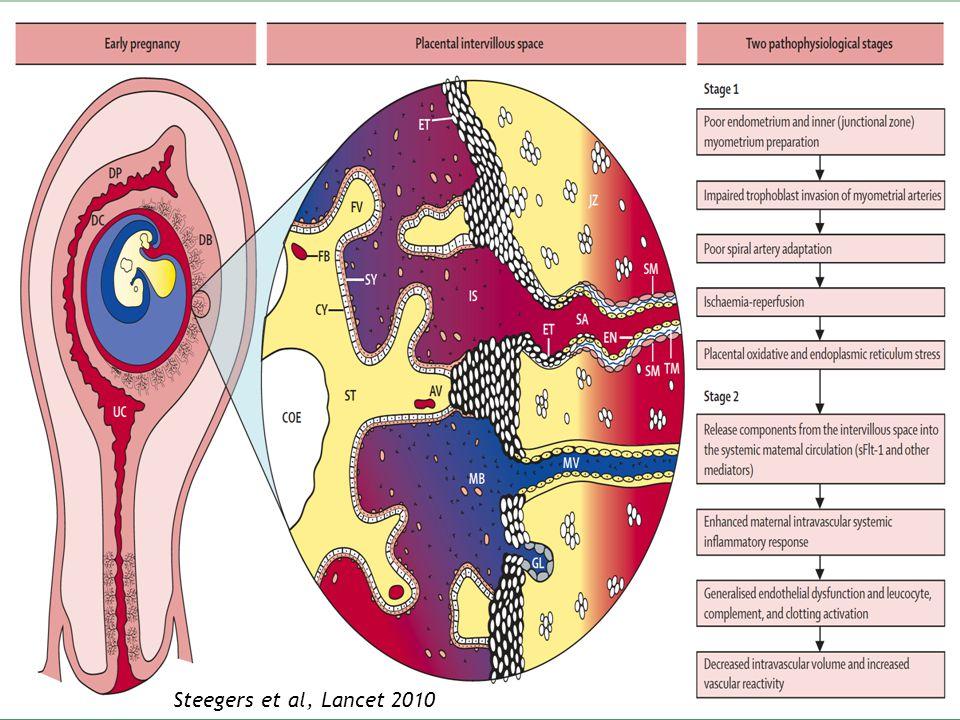 Pré-éclampsie (PE) PLACENTAIRE Implantation : connection artères spiralées-lacunes trophoblastiques Trophoblaste : HLA, myomètre : cellules NK Dysfonction régulation invasion trophoblastique: phénomènes hypoxie-reperfusion placentaire Stress oxydant : Reactive Oxygen Species PE = échec dinteraction entre 2 organismes génétiquement différents Lésions ADN, protéines, … Petit placenta, hypoxie chronique