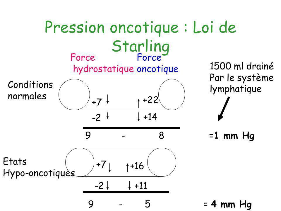 Pression oncotique : Loi de Starling Force hydrostatique Force oncotique Conditions normales +7 -2 +22 +14 9 - 8 =1 mm Hg Etats Hypo-oncotiques +7 +16