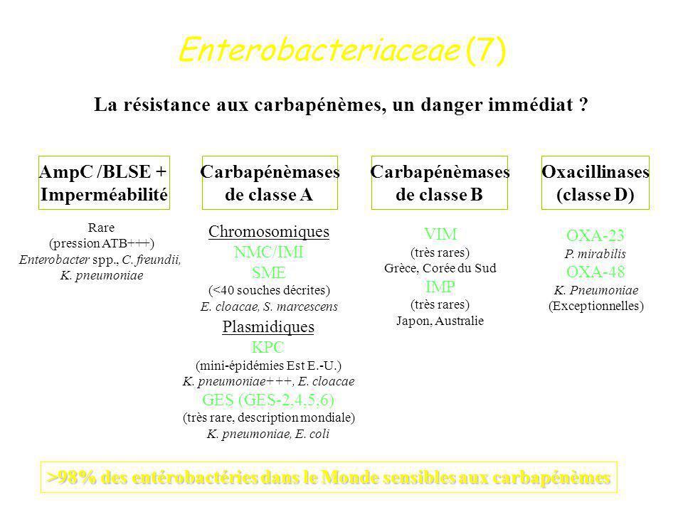 Enterobacteriaceae (7) La résistance aux carbapénèmes, un danger immédiat ? AmpC /BLSE + Imperméabilité Carbapénèmases de classe A Carbapénèmases de c