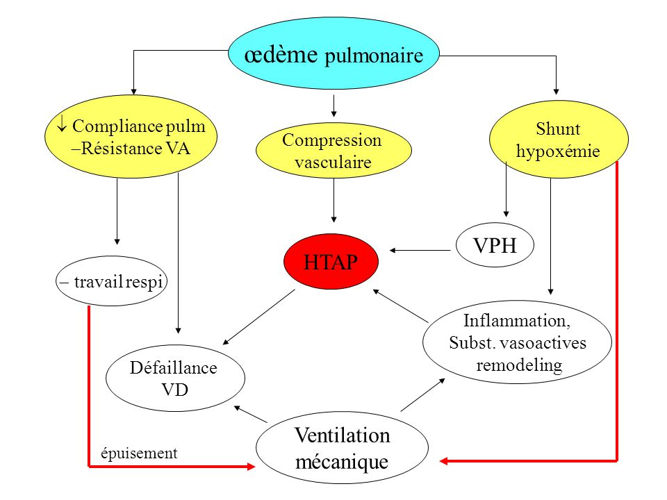 œdème pulmonaire Compliance pulm Résistance VA Compression vasculaire Ventilation mécanique Inflammation, Subst. vasoactives remodeling HTAP Shunt hyp