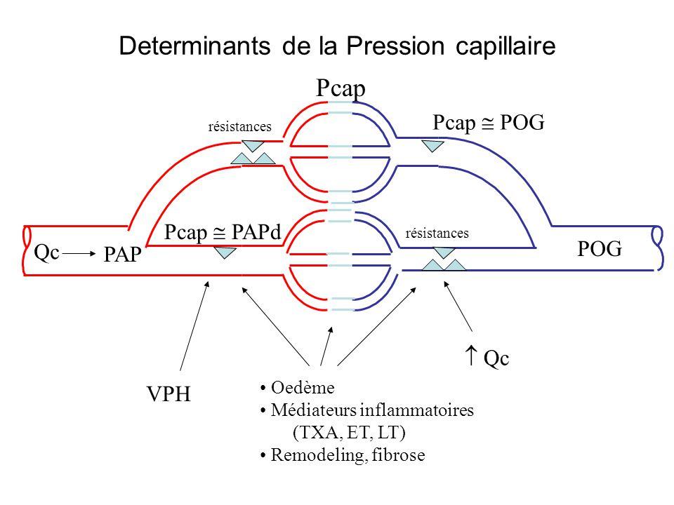 Determinants de la Pression capillaire PAP POG résistances Pcap Qc Pcap POG Pcap PAPd Qc Oedème Médiateurs inflammatoires (TXA, ET, LT) Remodeling, fi