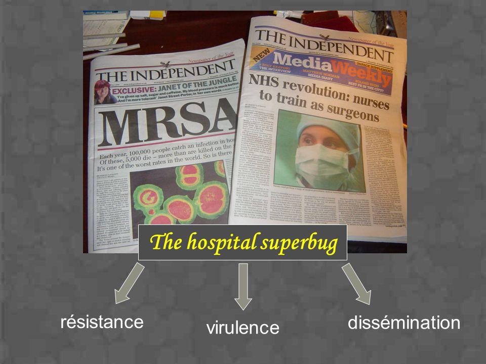 The hospital superbug dissémination virulence résistance