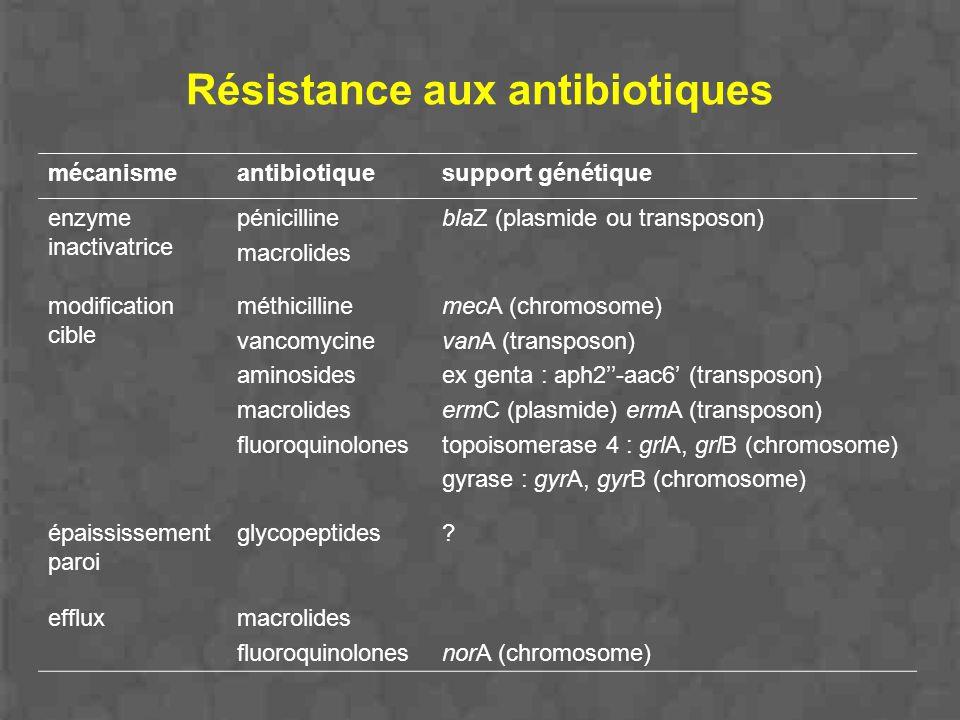 Résistance aux antibiotiques mécanismeantibiotiquesupport génétique enzyme inactivatrice pénicilline macrolides blaZ (plasmide ou transposon) modifica