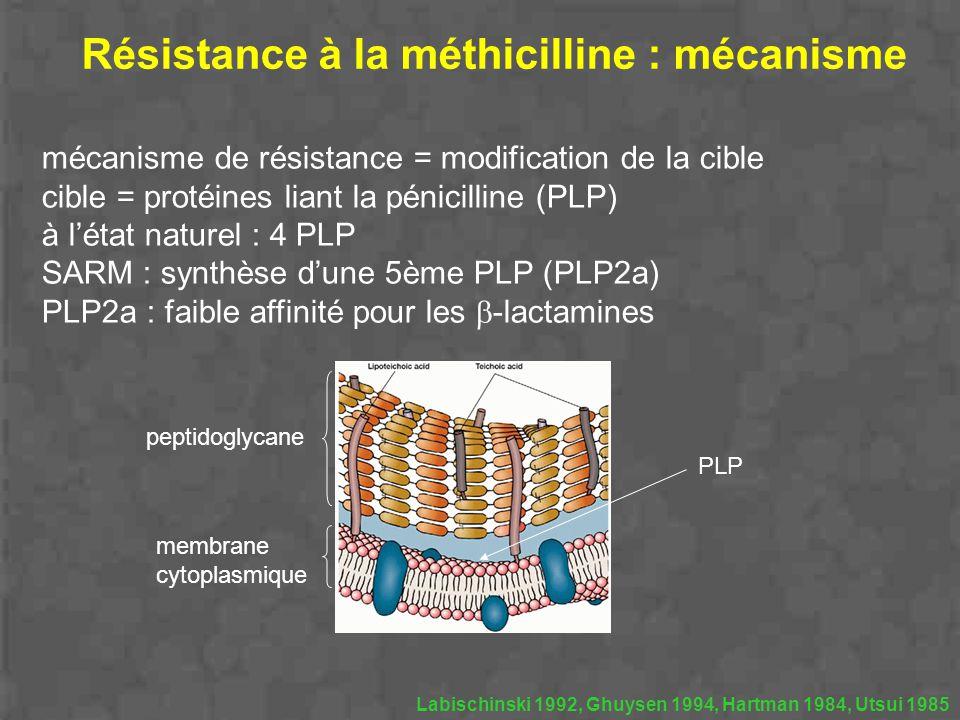 Résistance à la méthicilline : mécanisme mécanisme de résistance = modification de la cible cible = protéines liant la pénicilline (PLP) à létat natur