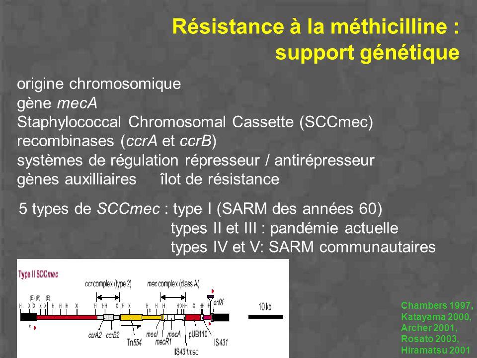 Résistance à la méthicilline : support génétique origine chromosomique gène mecA Staphylococcal Chromosomal Cassette (SCCmec) recombinases (ccrA et cc