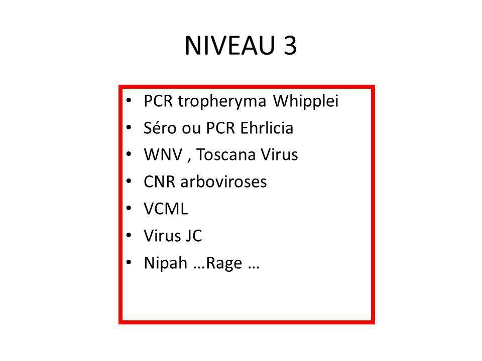 NIVEAU 3 PCR tropheryma Whipplei Séro ou PCR Ehrlicia WNV, Toscana Virus CNR arboviroses VCML Virus JC Nipah …Rage …