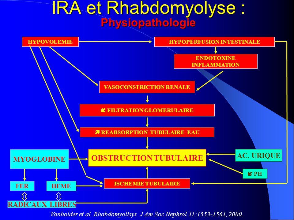 IRA et Rhabdomyolyse : Physiopathologie HYPOVOLEMIEHYPOPERFUSION INTESTINALE ENDOTOXINE INFLAMMATION VASOCONSTRICTION RENALE FILTRATION GLOMERULAIRE R