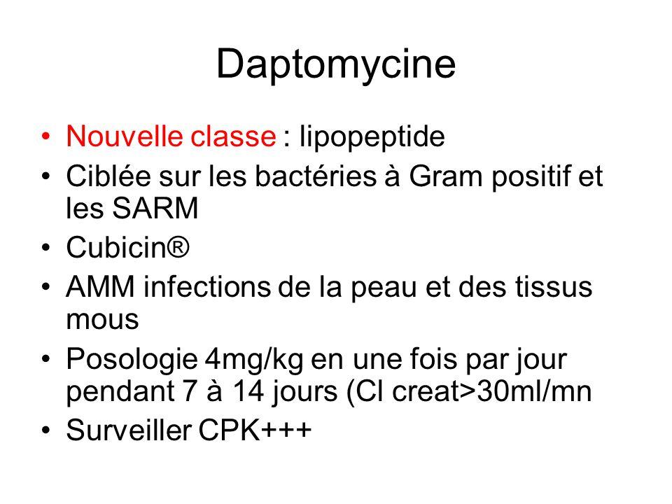 Daptomycine Nouvelle classe : lipopeptide Ciblée sur les bactéries à Gram positif et les SARM Cubicin® AMM infections de la peau et des tissus mous Posologie 4mg/kg en une fois par jour pendant 7 à 14 jours (Cl creat>30ml/mn Surveiller CPK+++