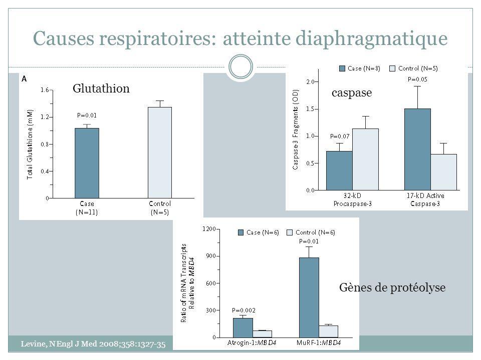 Causes respiratoires: atteinte diaphragmatique Levine, N Engl J Med 2008;358:1327-35 Glutathion Gènes de protéolyse caspase
