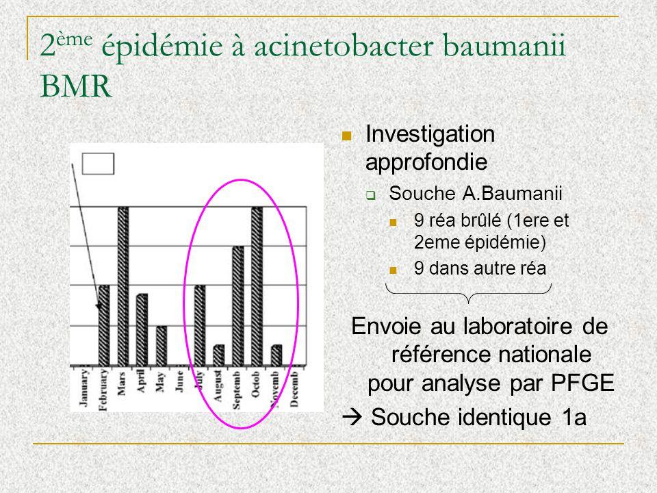 2 ème épidémie à acinetobacter baumanii BMR Investigation approfondie Souche A.Baumanii 9 réa brûlé (1ere et 2eme épidémie) 9 dans autre réa Envoie au laboratoire de référence nationale pour analyse par PFGE Souche identique 1a