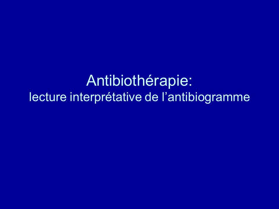 Antibiothérapie: lecture interprétative de lantibiogramme