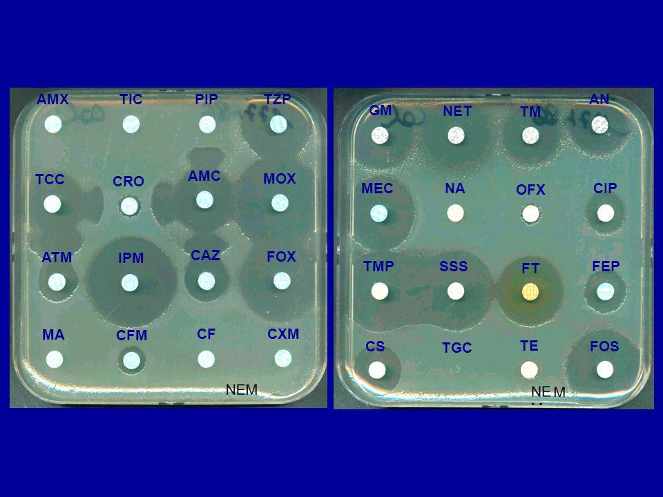 TGC TE FOSCS NA OFX CIPMEC TMP SSS FT FEP GM NET TM AN MA CFM CFCXM TCC CRO AMC MOX ATM IPM CAZ FOX AMXTICPIPTZP