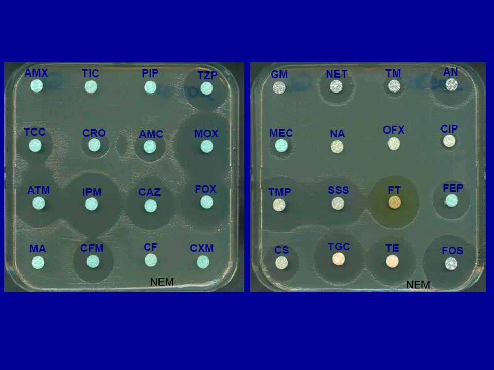 TGC TE FOS CS NA OFX CIP MEC TMP SSSFT FEP GM NET TM AN MA CFM CF CXM TCC CRO AMC MOX ATM IPMCAZ FOX AMX TIC PIP TZP