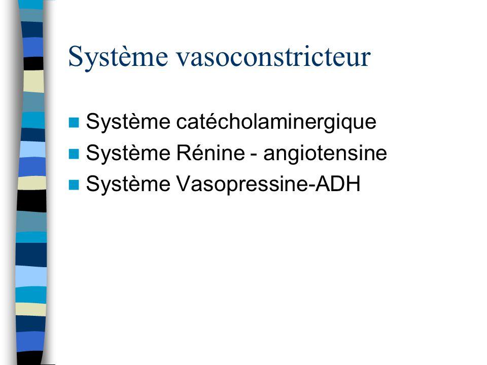 Système vasoconstricteur Système catécholaminergique Système Rénine - angiotensine Système Vasopressine-ADH