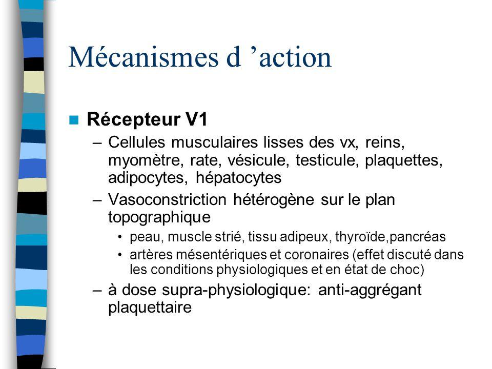 Mécanismes d action Récepteurs V2: –tubule collecteur rénal, cellules endothéliales –En réponse à lhyperosmolarité sanguine réabsorption de leau –Propriétés diurétiques au cours du choc septique et de linsuffisance cardiaque congestive Contre régulation des récepteurs v2 vasodilatation de lartériole afférente (NO) contrastant avec une vasoconstriction de lartériole efférente Récepteurs V3 –hypophyse – sécrétion d ACTH