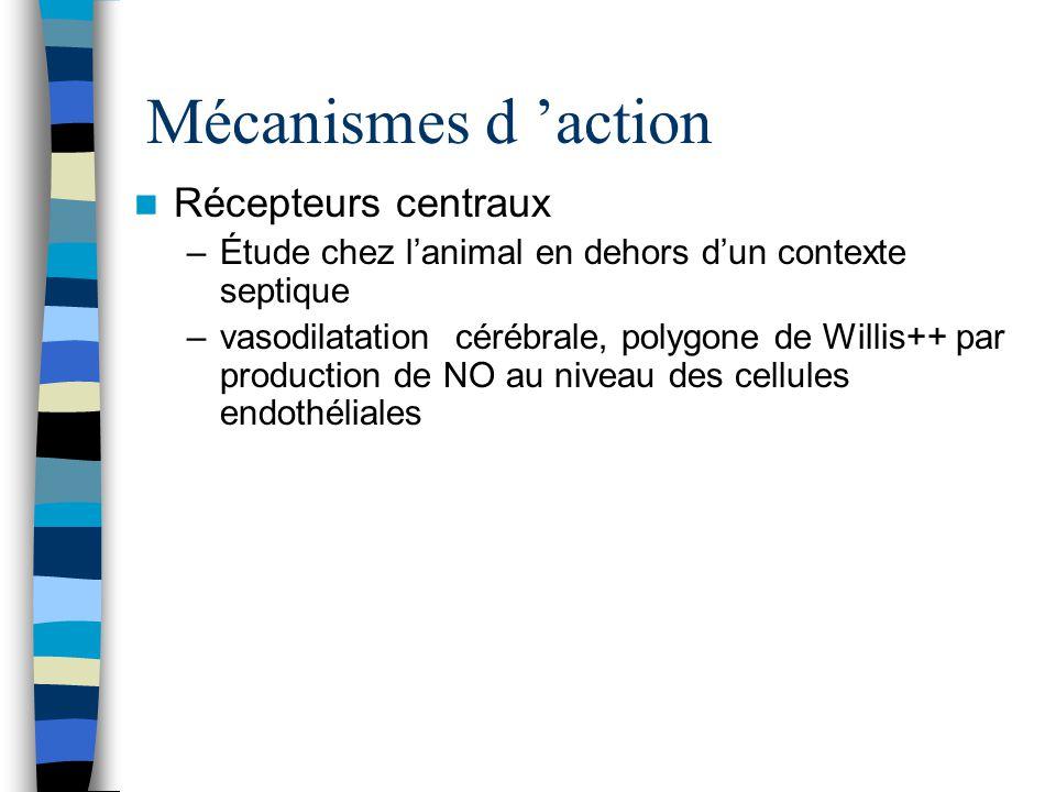 Mécanismes d action Récepteurs centraux –Étude chez lanimal en dehors dun contexte septique –vasodilatation cérébrale, polygone de Willis++ par produc