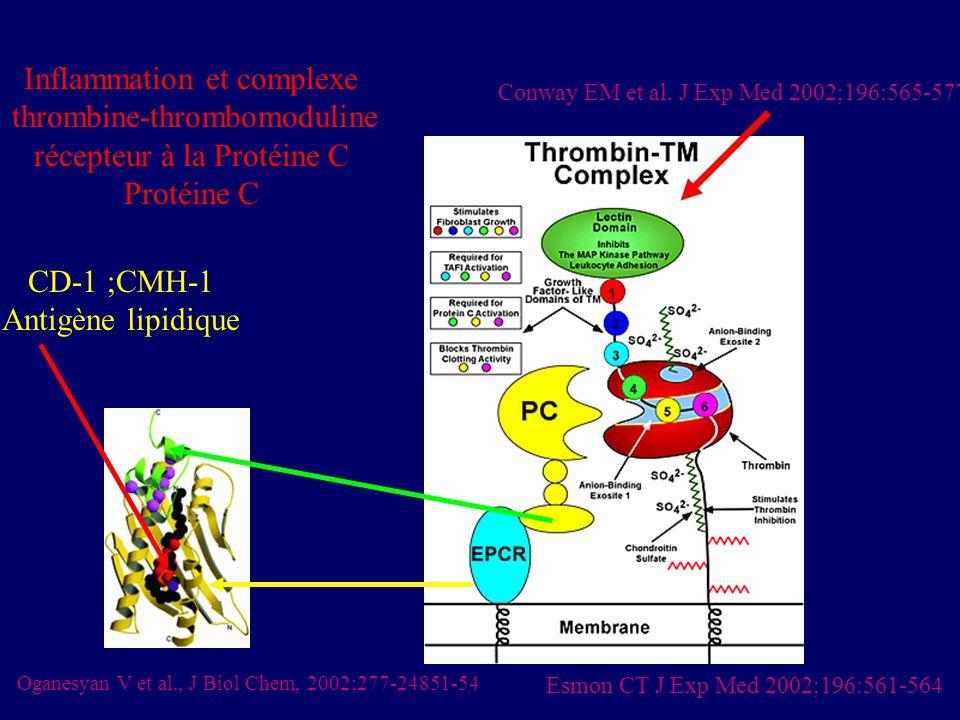 Conway EM et al. J Exp Med 2002;196:565-577 Esmon CT J Exp Med 2002;196:561-564 Inflammation et complexe thrombine-thrombomoduline récepteur à la Prot