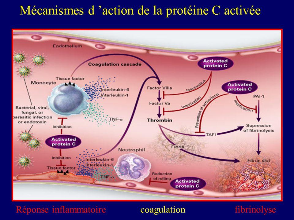 Réponse inflammatoirefibrinolysecoagulation Mécanismes d action de la protéine C activée