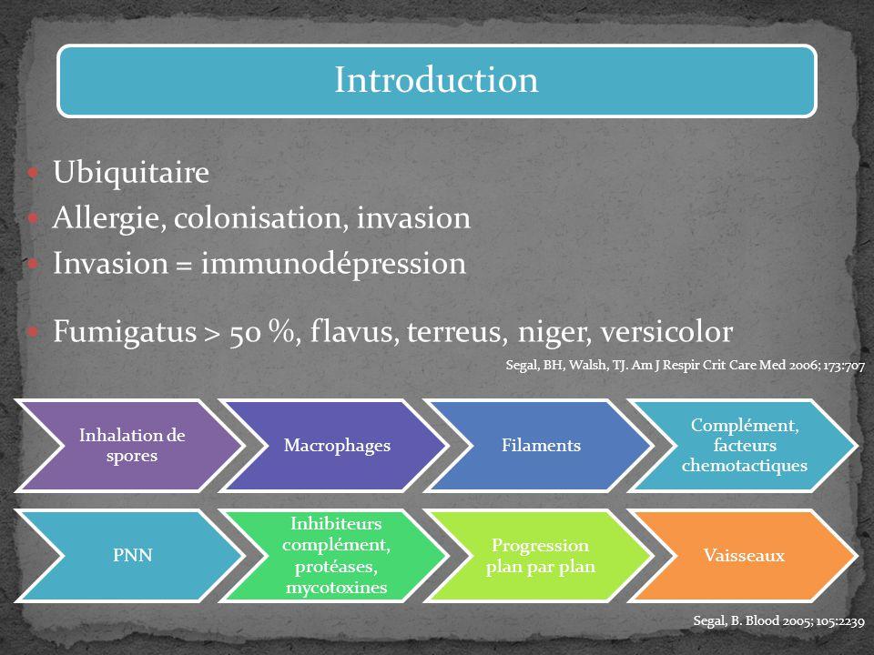 Ubiquitaire Allergie, colonisation, invasion Invasion = immunodépression Fumigatus > 50 %, flavus, terreus, niger, versicolor Segal, BH, Walsh, TJ. Am