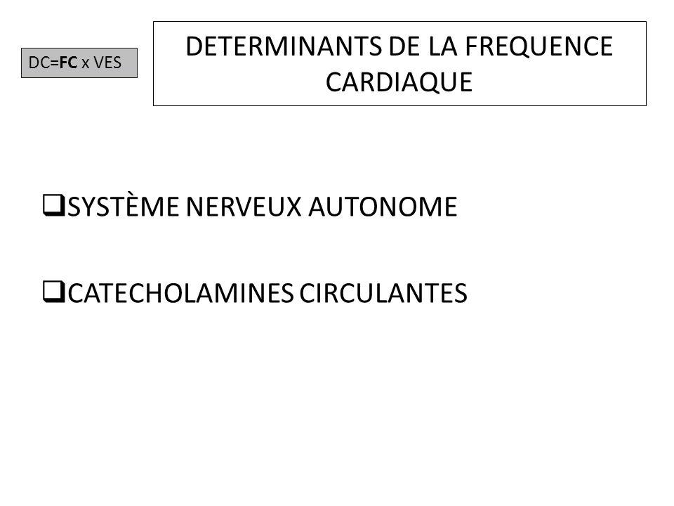 LE SYSTÈME NERVEUX AUTONOME SYSTÈME SYMPATHIQUE SYSTÈME PARASYMPATHIQUE Physiologie humaine appliquée, Arnette