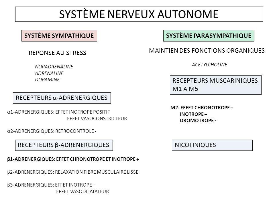 SYSTÈME NERVEUX AUTONOME SYSTÈME SYMPATHIQUESYSTÈME PARASYMPATHIQUE REPONSE AU STRESS NORADRENALINE ADRENALINE DOPAMINE MAINTIEN DES FONCTIONS ORGANIQUES ACETYLCHOLINE RECEPTEURS α-ADRENERGIQUES α1-ADRENERGIQUES: EFFET INOTROPE POSITIF EFFET VASOCONSTRICTEUR α2-ADRENERGIQUES: RETROCONTROLE - RECEPTEURS β-ADRENERGIQUES β1-ADRENERGIQUES: EFFET CHRONOTROPE ET INOTROPE + β2-ADRENERGIQUES: RELAXATION FIBRE MUSCULAIRE LISSE β3-ADRENERGIQUES: EFFET INOTROPE – EFFET VASODILATATEUR RECEPTEURS MUSCARINIQUES M1 A M5 NICOTINIQUES M2: EFFET CHRONOTROPE – INOTROPE – DROMOTROPE -
