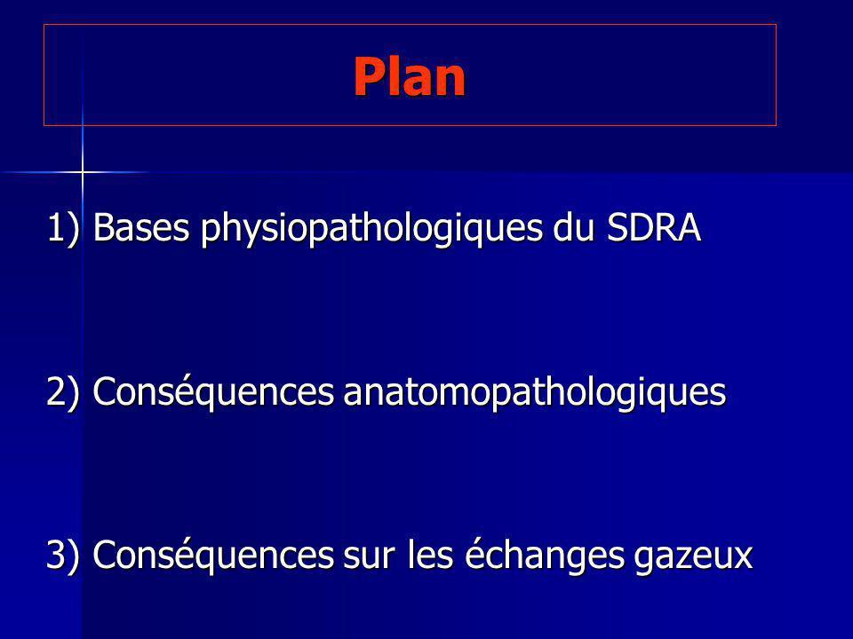 Plan 1) Bases physiopathologiques du SDRA 2) Conséquences anatomopathologiques 3) Conséquences sur les échanges gazeux