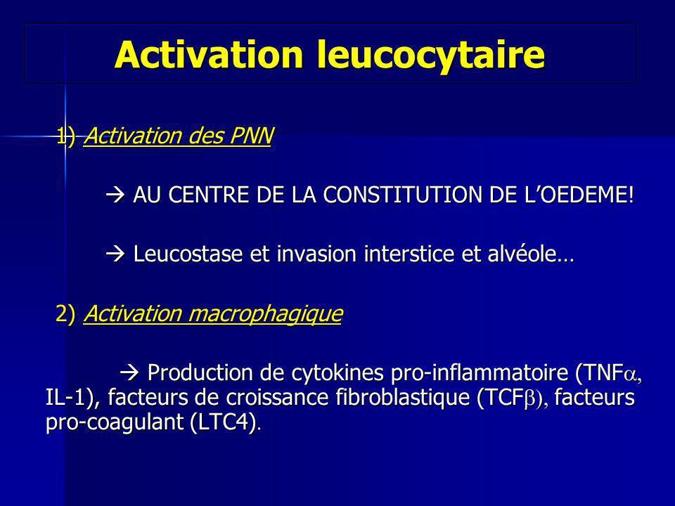 1) Activation des PNN 1) Activation des PNN AU CENTRE DE LA CONSTITUTION DE LOEDEME! AU CENTRE DE LA CONSTITUTION DE LOEDEME! Leucostase et invasion i