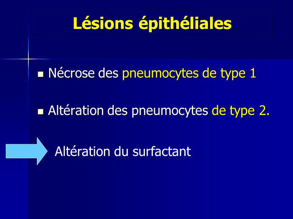 Lésions épithéliales Nécrose des pneumocytes de type 1 Nécrose des pneumocytes de type 1 Altération des pneumocytes de type 2. Altération des pneumocy
