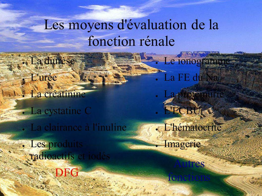DESC Réanimation médicale Marseille 2004 La diurèse Elle donne une évaluation globale de la fonction rénale.