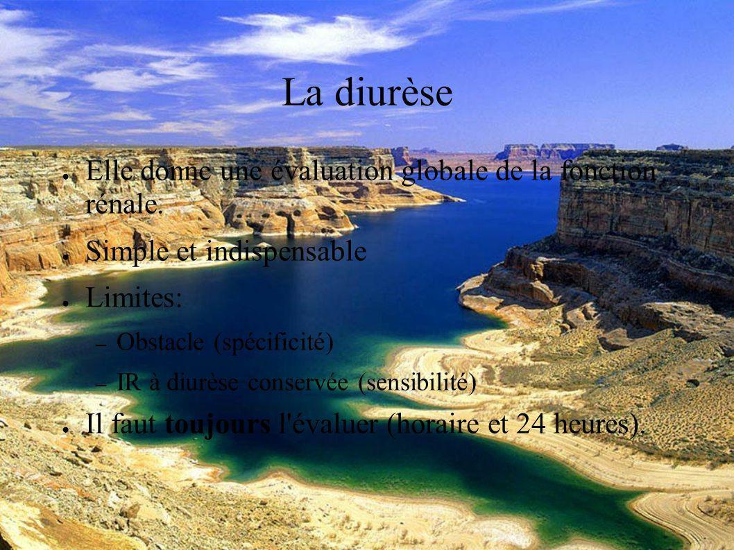 DESC Réanimation médicale Marseille 2004 L urée C est le marqueur historique.