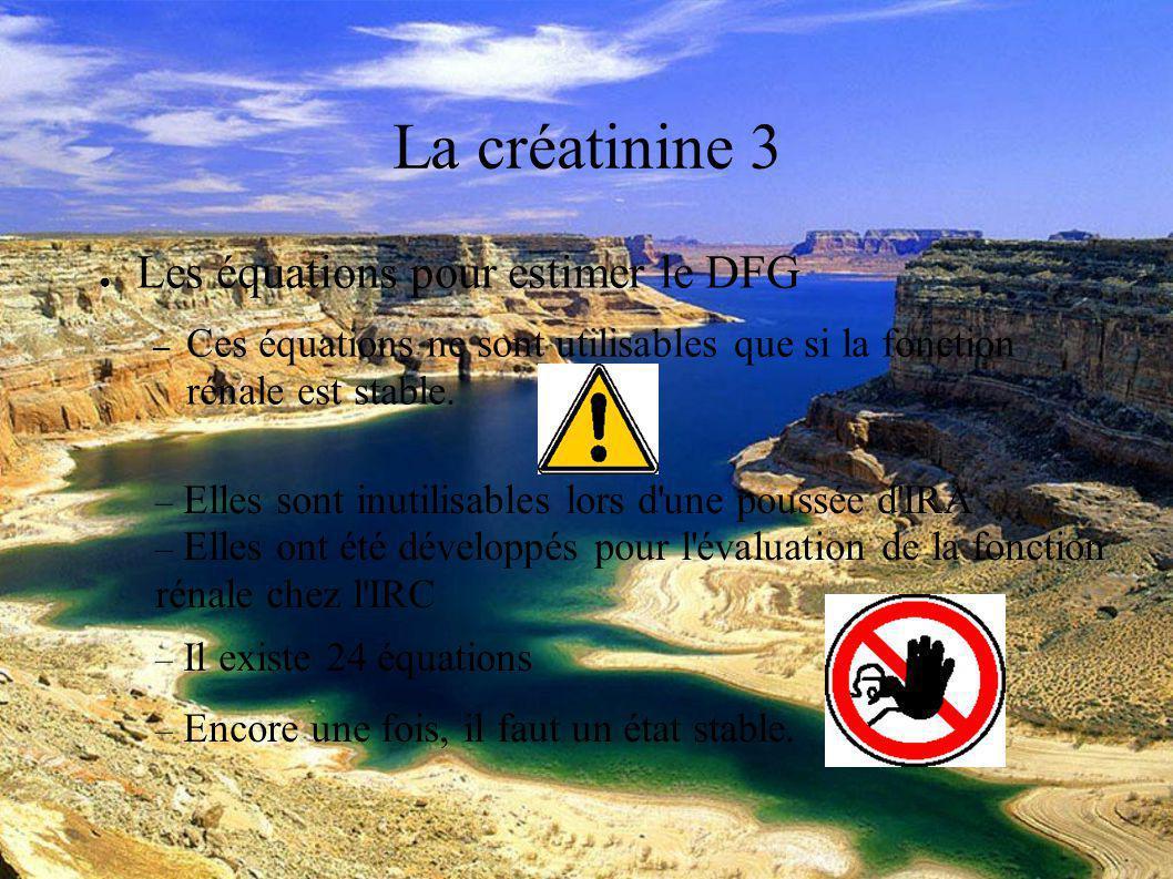 DESC Réanimation médicale Marseille 2004 La créatinine 3 Les équations pour estimer le DFG – Ces équations ne sont utilisables que si la fonction rénale est stable.