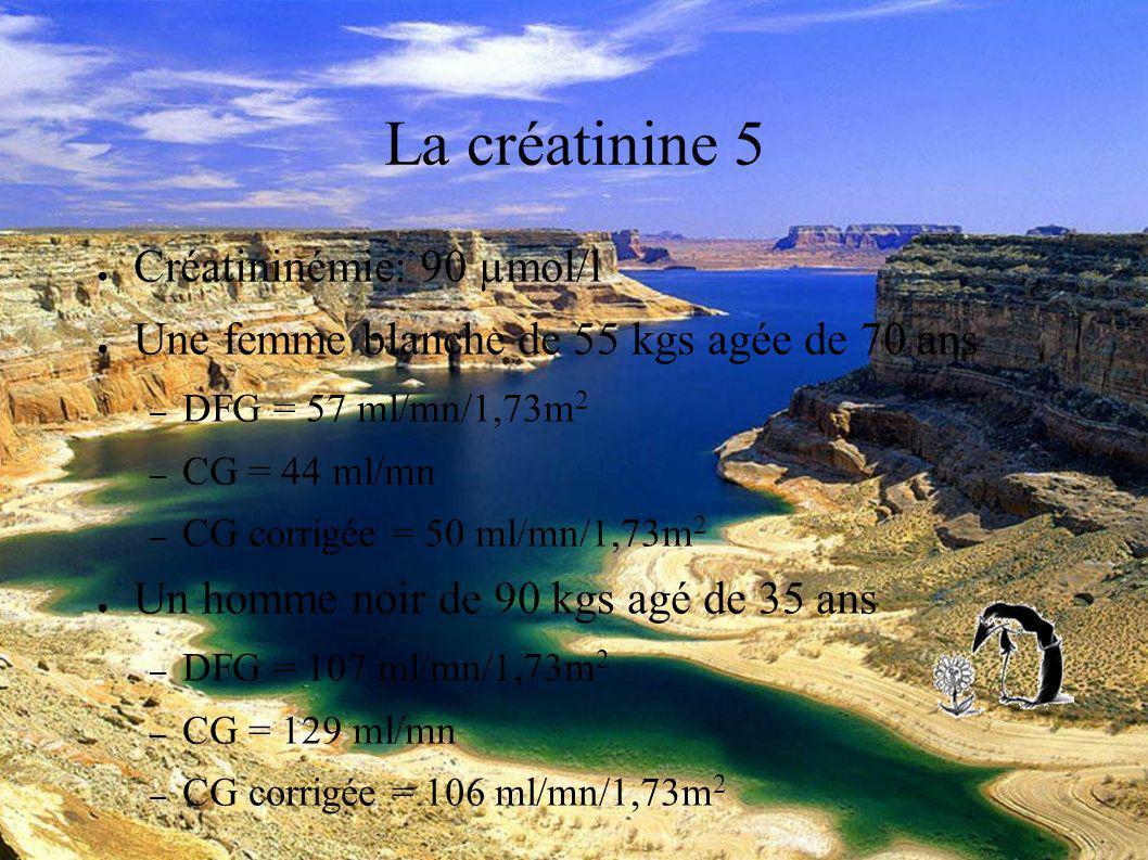 DESC Réanimation médicale Marseille 2004 La créatinine 5 Créatininémie: 90 µmol/l Une femme blanche de 55 kgs agée de 70 ans – DFG = 57 ml/mn/1,73m 2 – CG = 44 ml/mn – CG corrigée = 50 ml/mn/1,73m 2 Un homme noir de 90 kgs agé de 35 ans – DFG = 107 ml/mn/1,73m 2 – CG = 129 ml/mn – CG corrigée = 106 ml/mn/1,73m 2