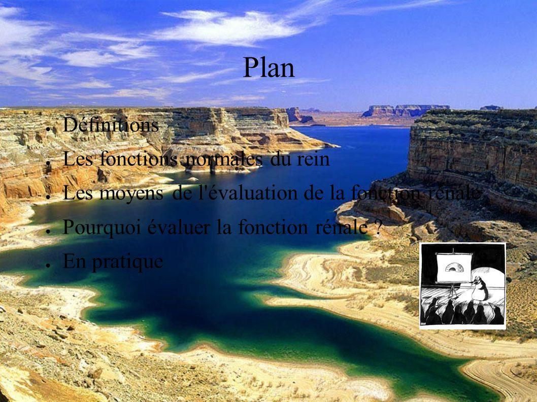DESC Réanimation médicale Marseille 2004 Plan Définitions Les fonctions normales du rein Les moyens de l évaluation de la fonction rénale Pourquoi évaluer la fonction rénale .