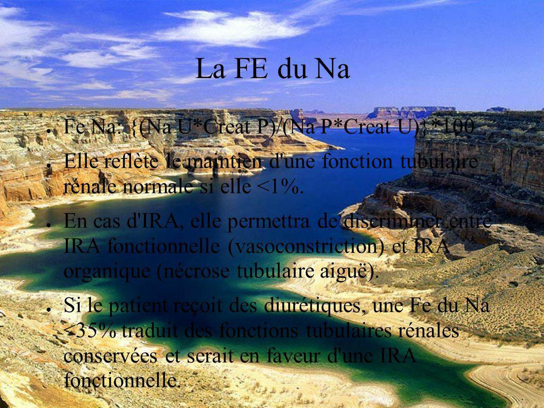 DESC Réanimation médicale Marseille 2004 Protéinurie Y penser...