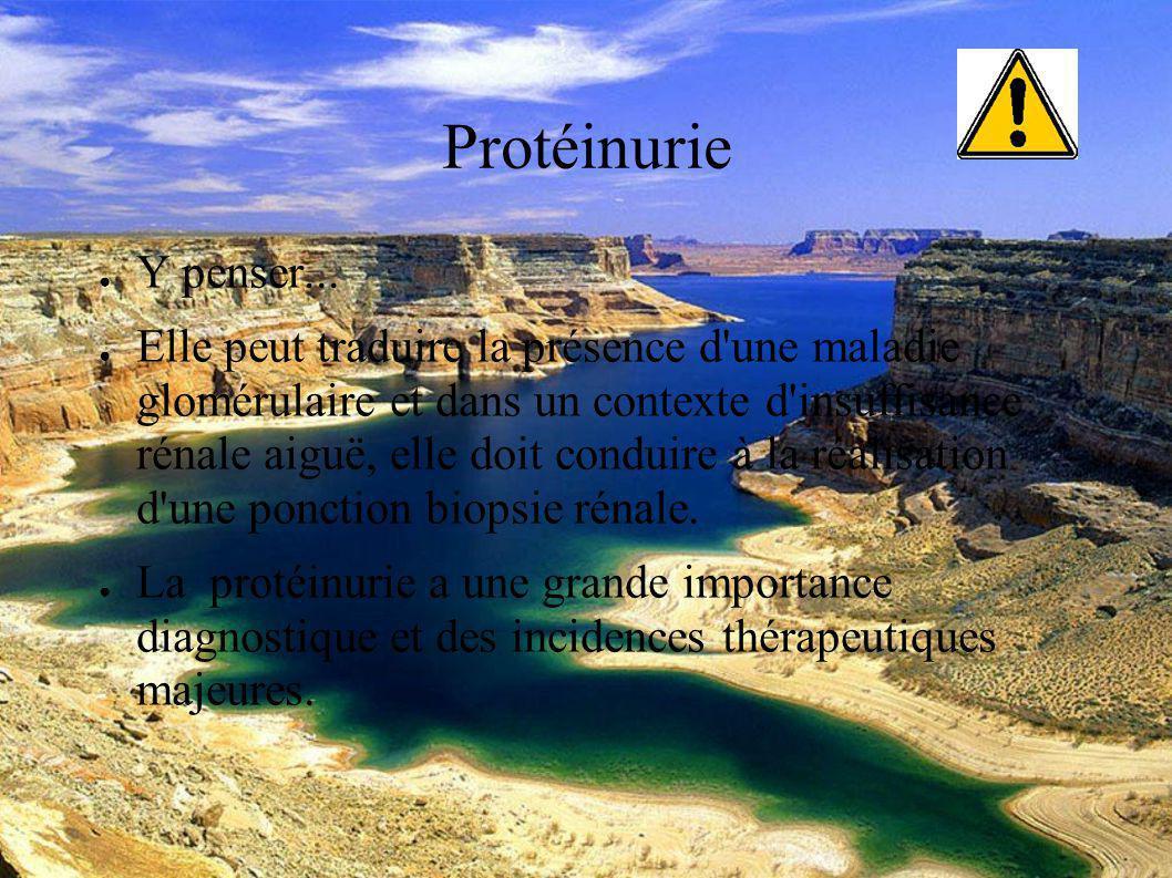 DESC Réanimation médicale Marseille 2004 Les moyens d évaluation de la fonction rénale