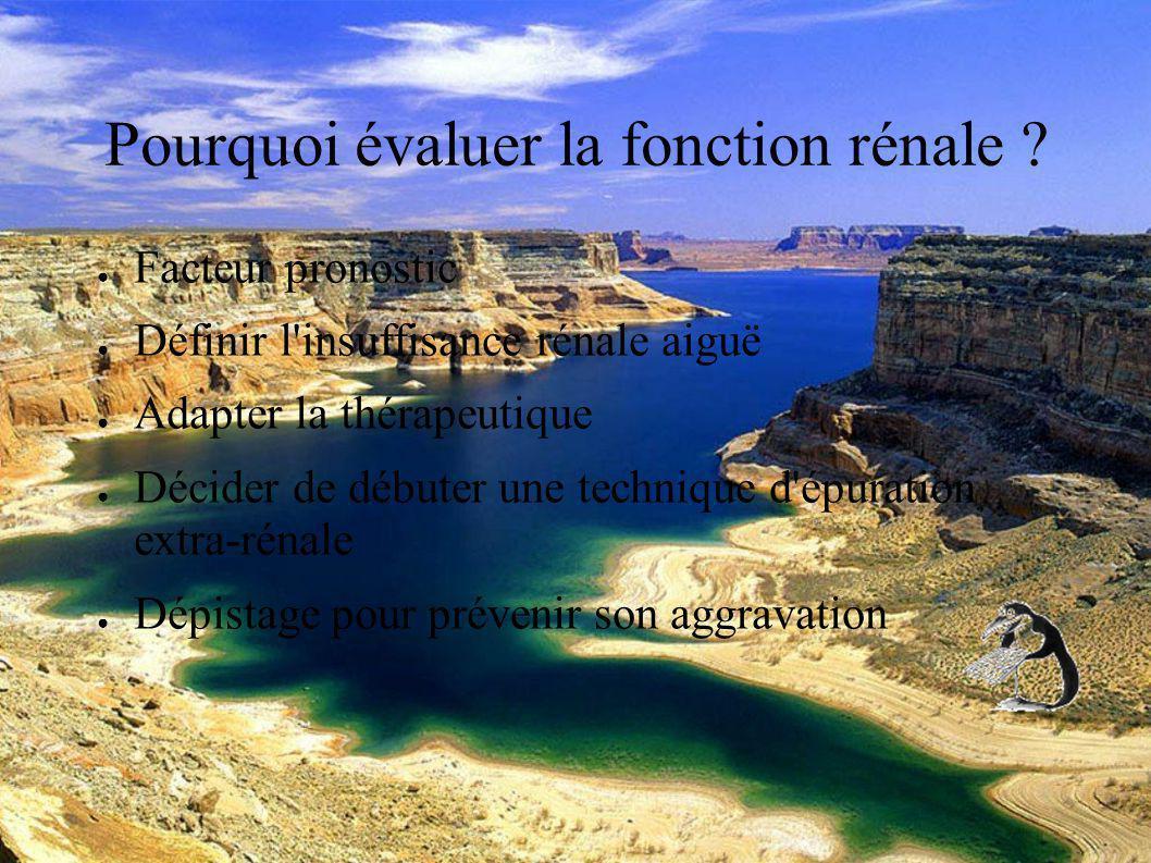 DESC Réanimation médicale Marseille 2004 Pourquoi évaluer la fonction rénale .