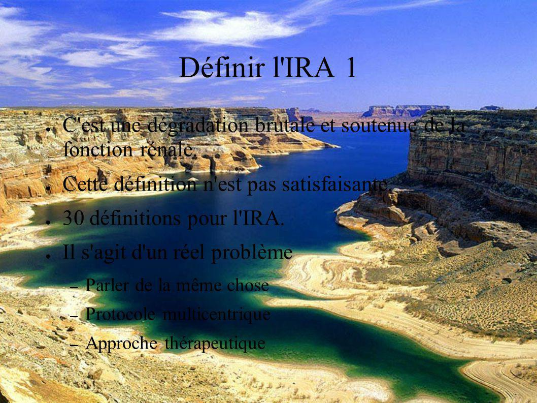 DESC Réanimation médicale Marseille 2004 Définir l IRA 2 Il y a eu un effort collaboratif qui propose une nouvelle définition et classification de l insuffisance rénale aiguë réunie sous l acronyme RIFLE.