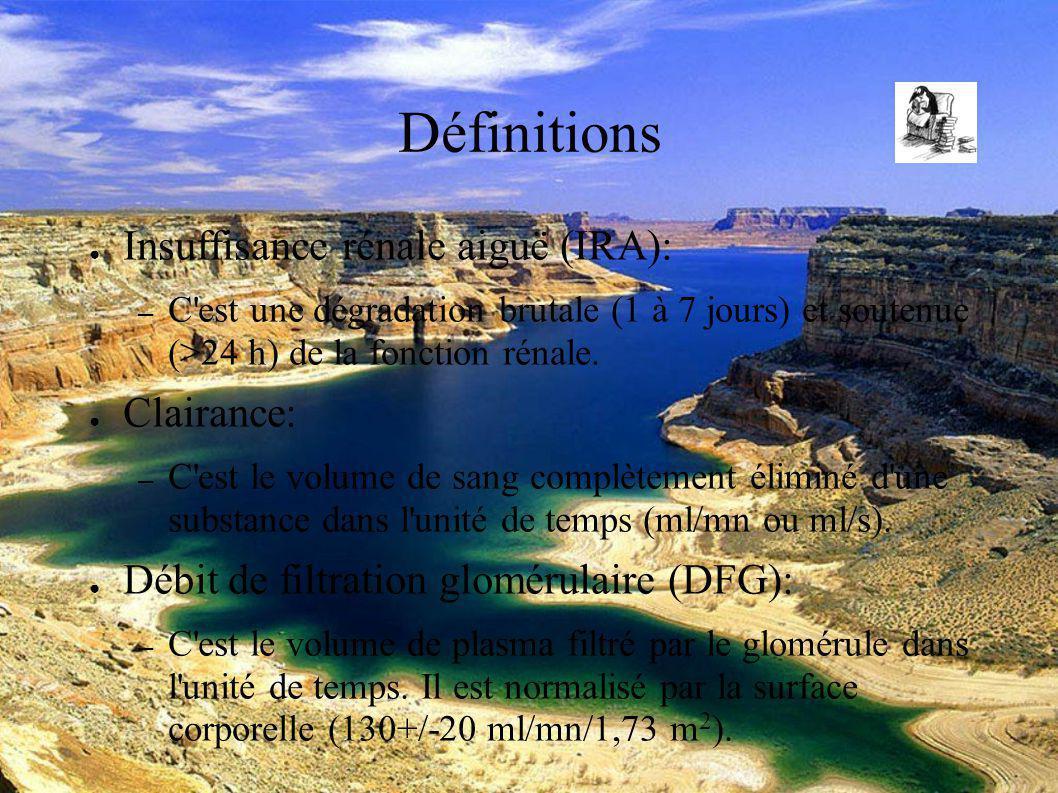 DESC Réanimation médicale Marseille 2004 Définitions Insuffisance rénale aiguë (IRA): – C est une dégradation brutale (1 à 7 jours) et soutenue (>24 h) de la fonction rénale.