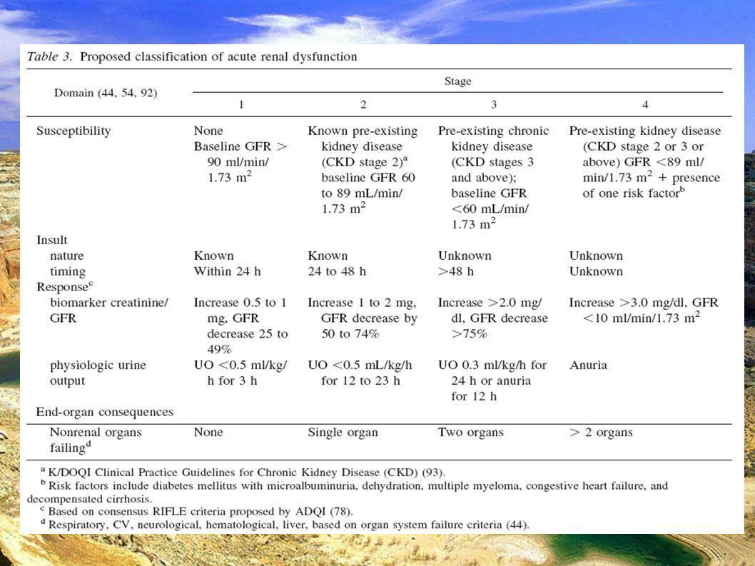 DESC Réanimation médicale Marseille 2004 Adapter la thérapeutique 1 La réanimation – La fonction rénale du fait de sa sensibilité à l ischémie et à l oxygénation est probablement un excellent reflet de l efficacité des mesures de réanimation en particulier dans les états de choc.