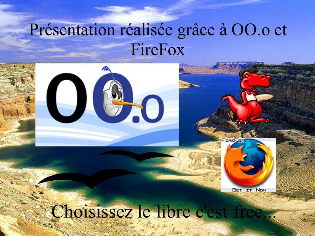 DESC Réanimation médicale Marseille 2004 Présentation réalisée grâce à OO.o et FireFox Choisissez le libre c est free...