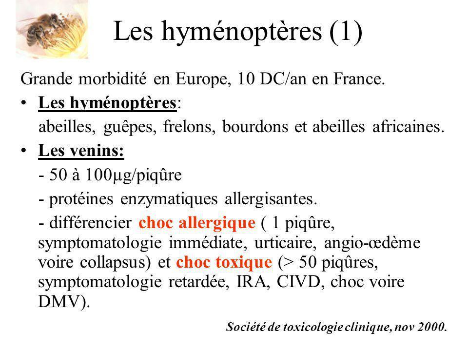 Les hyménoptères (1) Grande morbidité en Europe, 10 DC/an en France. Les hyménoptères: abeilles, guêpes, frelons, bourdons et abeilles africaines. Les