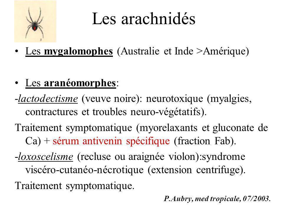 Les arachnidés Les mygalomophes (Australie et Inde >Amérique) Les aranéomorphes: -lactodectisme (veuve noire): neurotoxique (myalgies, contractures et