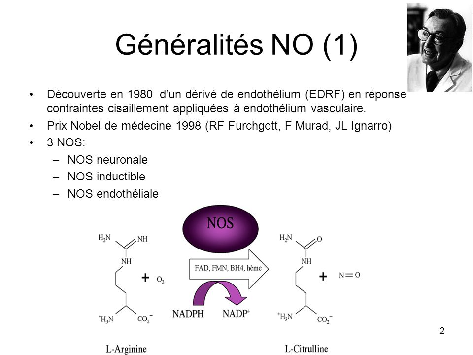 2 Généralités NO (1) Découverte en 1980 dun dérivé de endothélium (EDRF) en réponse contraintes cisaillement appliquées à endothélium vasculaire. Prix