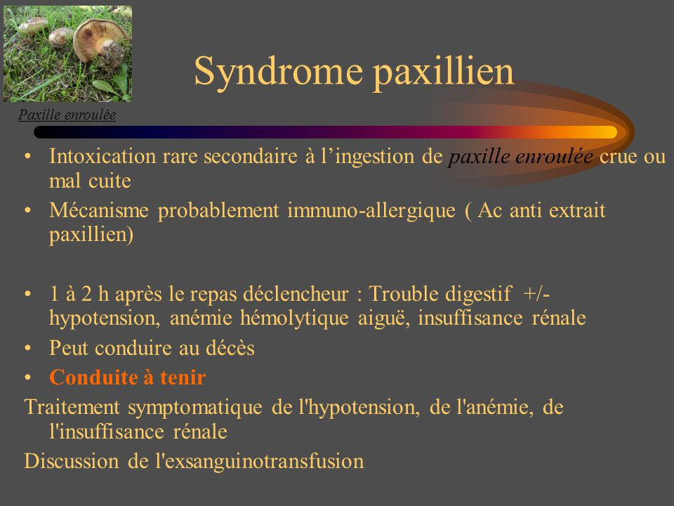 Syndrome paxillien Intoxication rare secondaire à lingestion de paxille enroulée crue ou mal cuite Mécanisme probablement immuno-allergique ( Ac anti