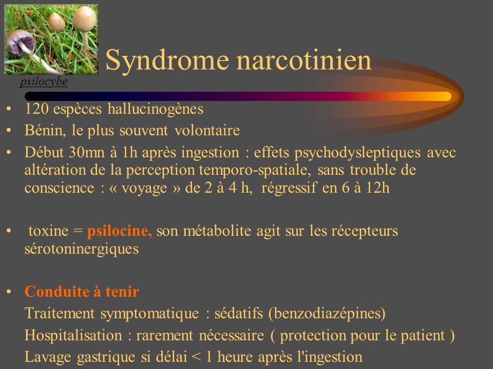 Syndrome narcotinien 120 espèces hallucinogènes Bénin, le plus souvent volontaire Début 30mn à 1h après ingestion : effets psychodysleptiques avec alt