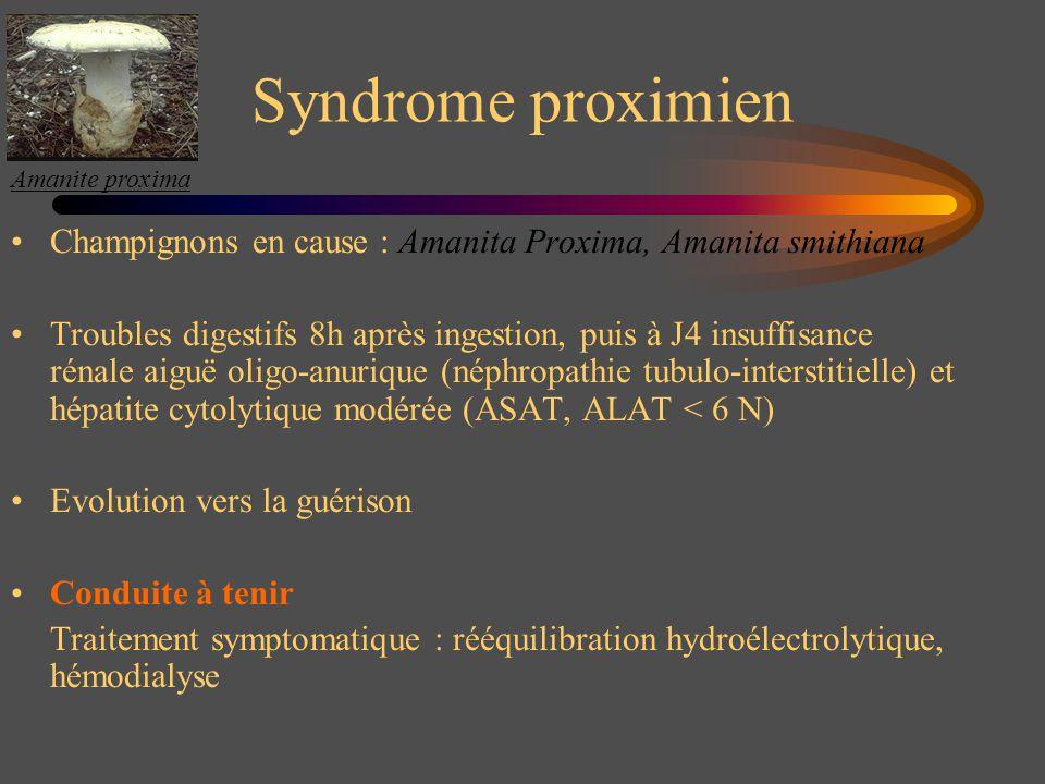 Syndrome proximien Champignons en cause : Amanita Proxima, Amanita smithiana Troubles digestifs 8h après ingestion, puis à J4 insuffisance rénale aigu