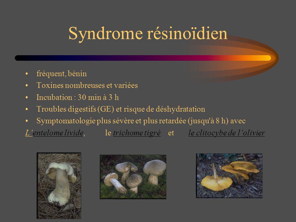 Syndrome résinoïdien fréquent, bénin Toxines nombreuses et variées Incubation : 30 min à 3 h Troubles digestifs (GE) et risque de déshydratation Sympt